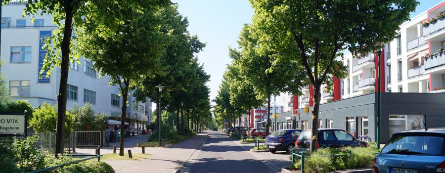 Neu Olvenstedt